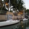 Palm trees, flip-flop, whales and sea-turtles: Winter Sailing!